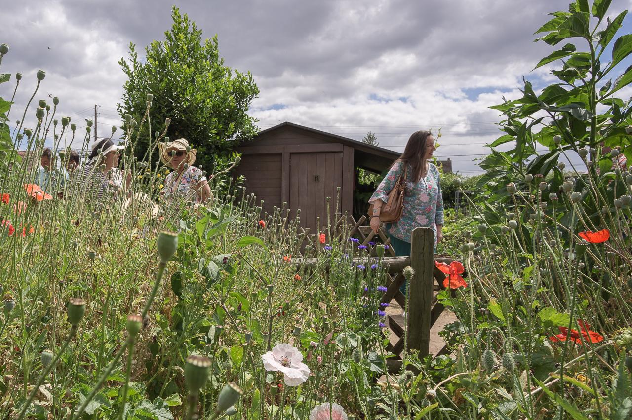 Les mureaux la soci t d 39 horticulture revient au jardin for Jardin yvelines