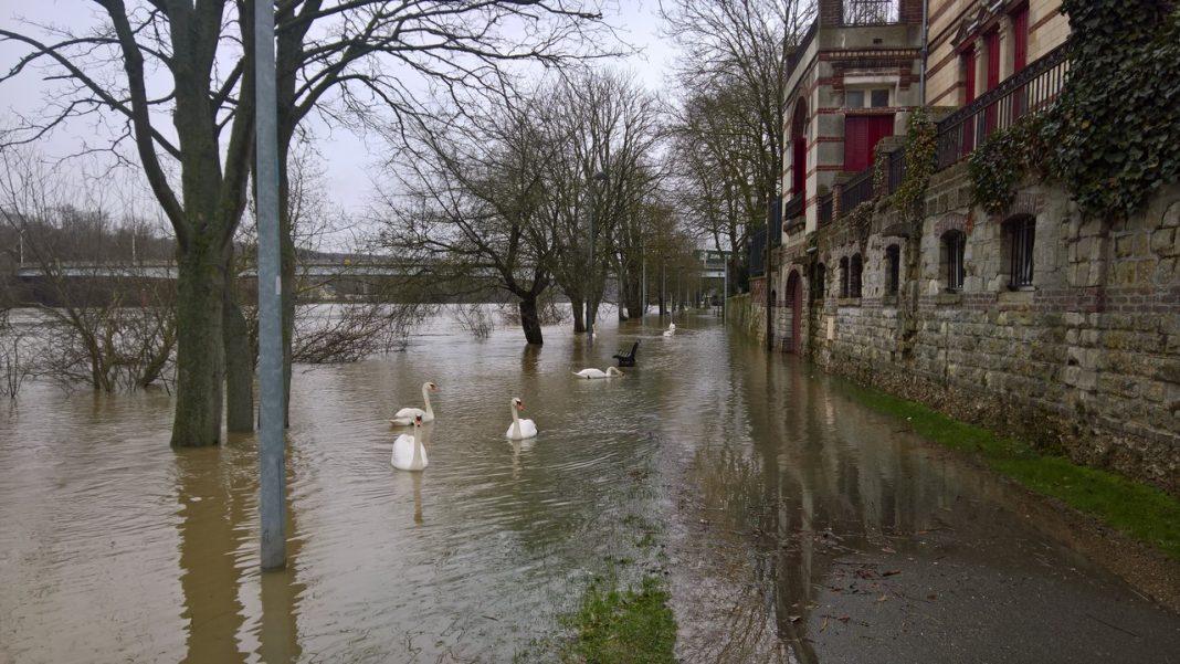 Les mureaux les berges inond es un num ro vert pour les for Piscine mantes la ville
