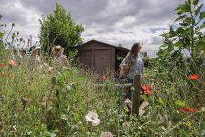 La société d'horticulture revient au jardin lauréat