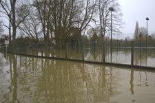 L'eau a atteint des premiers sous-sols sur l'île et en bord de Seine