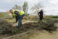 Environ 15% des riverains ont nettoyé la commune