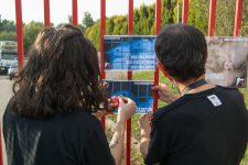 Des militants anti-abattoir s'introduisent dans l'abattoir