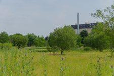 Projet de ferme urbaine : des cultures au pied des tours