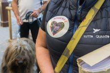 Un an de prison avec sursis après avoir abandonné son chien