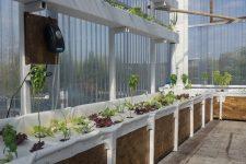 Le magasin Leclerc veut toujours étendre sa micro-ferme hydroponique
