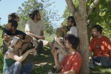 Un film documentaire sur l'agriculture pour lefestival Alimenterre