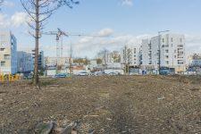 La Coudraie: des places supplémentaires au détriment des espaces verts?