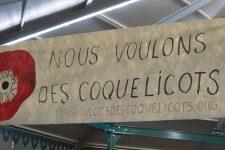Les Coquelicots s'engagent contre les pesticides