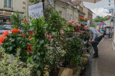 Comment faire revenir commerçants ethabitants en centre-ville?