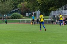 National2 : Pas de victoire pour les clubs devallée de Seine
