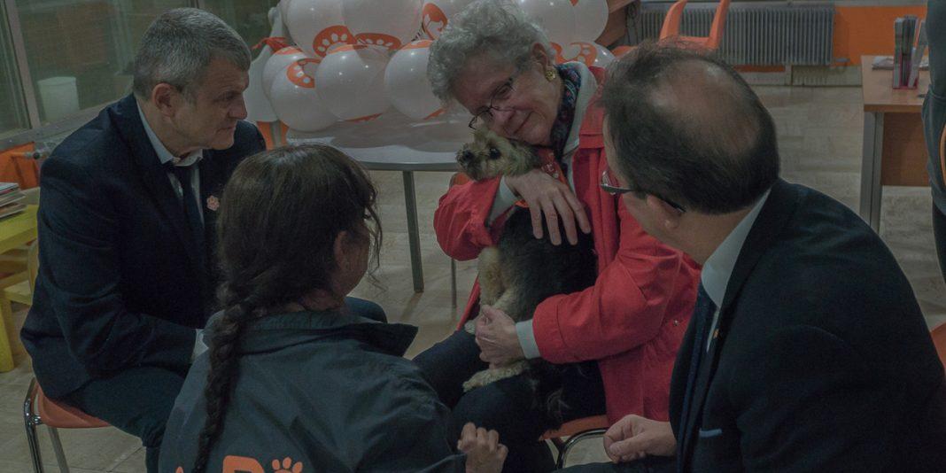 SPA : Adopter Pour Lutter Contre L