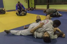 Le jiu jitsu brésilien, un sport tactique quisedémocratise