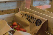 Deux tonnes de fraises pour les Ehpad yvelinois